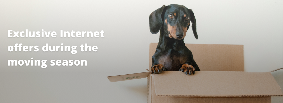 Exclusive Internet offers during the moving season