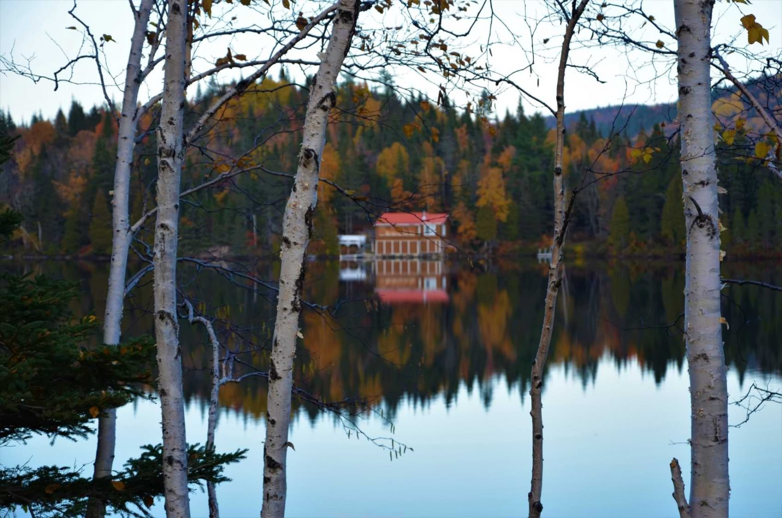 A cabin in Fjord-du-Saguenay surrounded by trees and a reflective lake