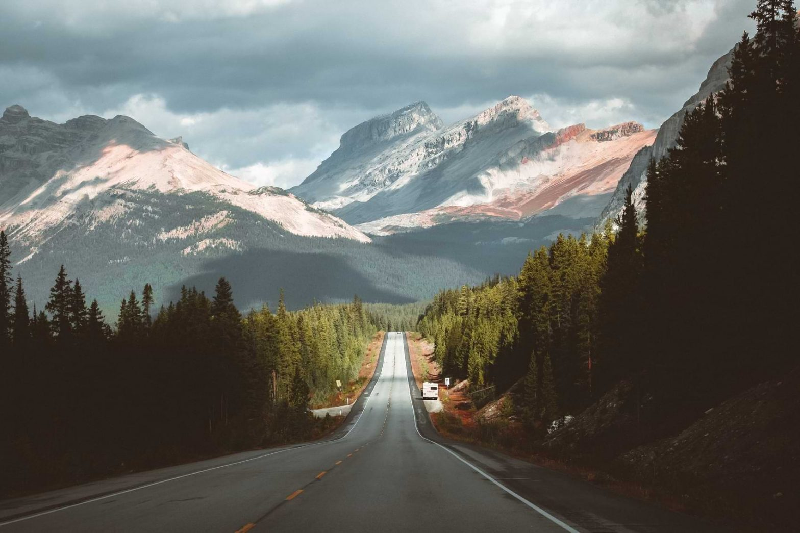 A road in rural Alberta surrounded by beautiful trees and a tall mountain
